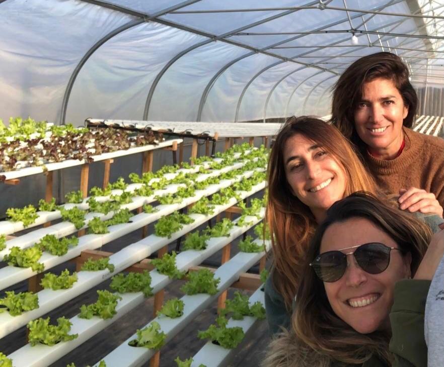 Tres abogadas se le animan a la agricultura con un innovador método en Funes